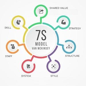 7s model
